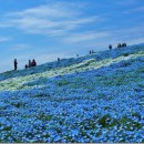 常陸海浜公園01 黒須正子さん