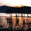 琵琶湖の夕暮れ 堀田敏夫さん