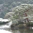 2月新宿御苑雪景色 小川一幸さん
