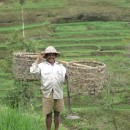 ほっとする方_インドネシアの棚田にて   Dr.Y