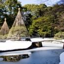 雪の小石川後楽園(2) 橋 本 陞さん